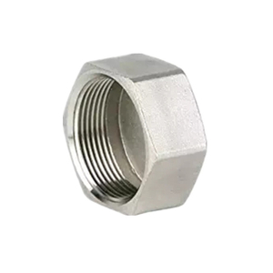 Stainless Steel Hexagon Cap 150LB Threaed Fitting